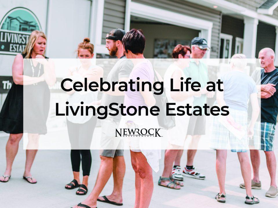 LivingStone Estates